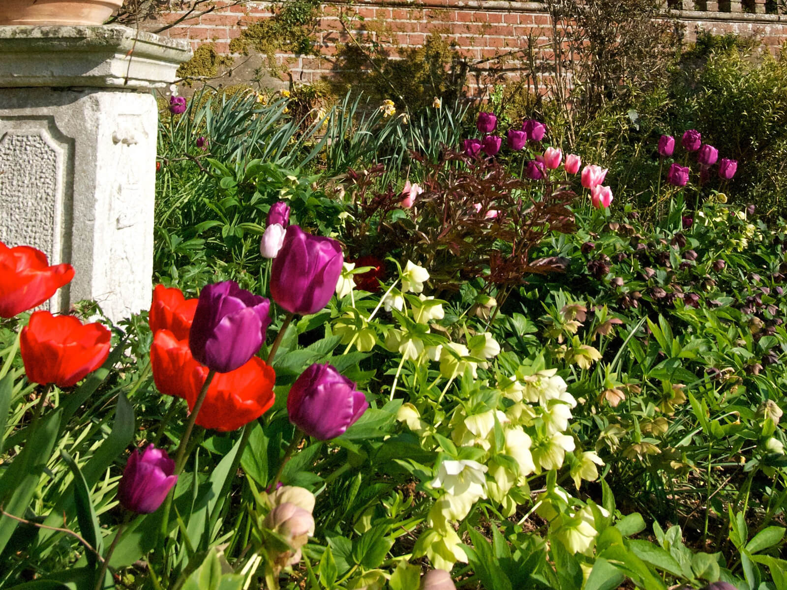 The Making in March, Layer Marney Tower latest news